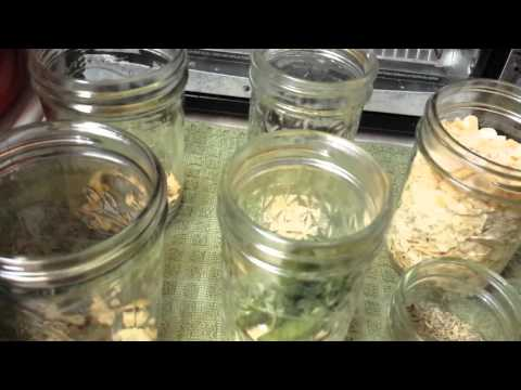 Home canning: Dilly Beans (pickled green beans)