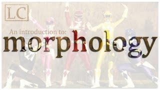 An Introduction to Morphology