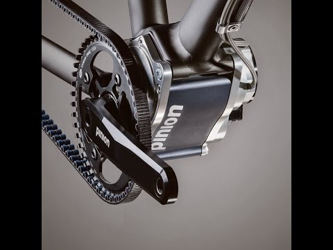 Pinion P1.18  bicycle gearbox How it works