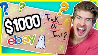 I BOUGHT A $1000 EBAY MYSTERY BOX! + MASSIVE GIVEAWAY!