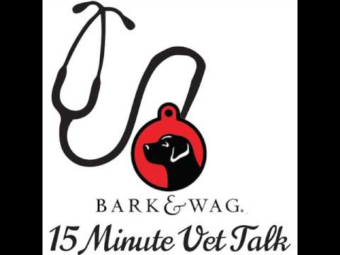 Want the skinny on spaying or neutering your pet? Dr. Laura Brown discusses this topic.