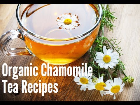 Organic Chamomile Tea Recipes: Chamomile Latte, Chamomile Hot Chocolate, Chamomile Hot Toddy