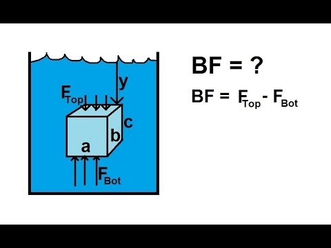 Physics - Fluid Statics (8 of 10) Buoyancy Force