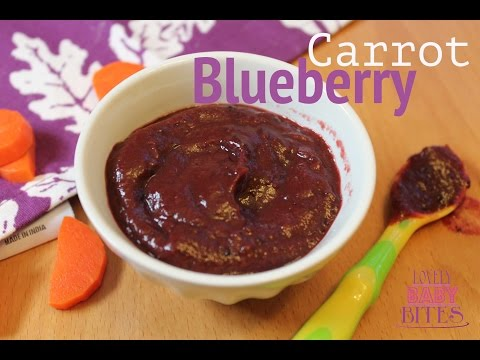 Carrot Blueberry Baby Puree | Elle's First Foods