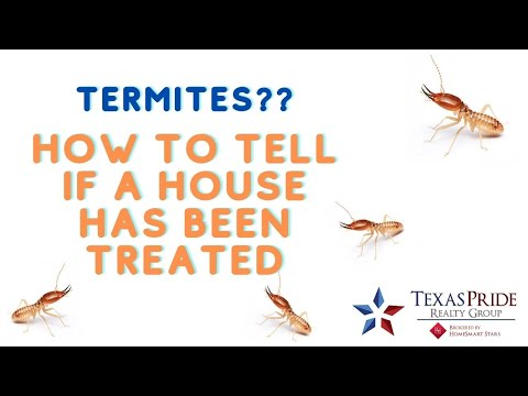 How to tell if a house is treated for termites