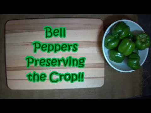 Bell peppers.  Preserving the crop.