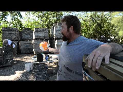 H-T video: Stone crab season opens