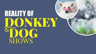 Reality of Donkey and Dog Shows | ZaibTV