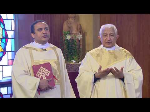La Santa Misa | Domingo 3º de Pascua