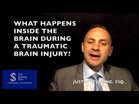 WHAT HAPPENS INSIDE THE BRAIN DURING A TRAUMATIC BRAIN INJURY?