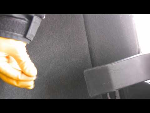 Removing dog hair from a car's carpet using rubber gloves