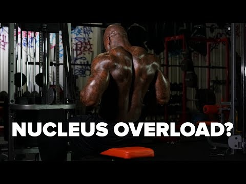 Why Nucleus Overload Training Won't Bring Up Lagging Bodyparts