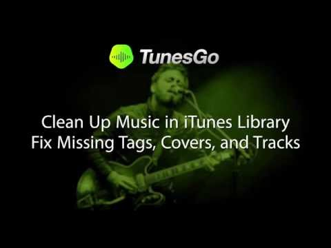 TunesGo: Clean Up Music in iTunes Library