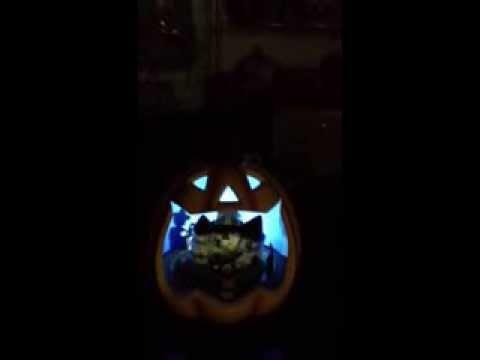 Halloween 2014 Big Mickey Pumpkin head