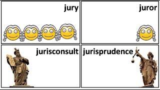 19.4 jury  juror jurist jurisprudence jurisconsult jurisdiction meaning in Hindi by Puneet Biseria