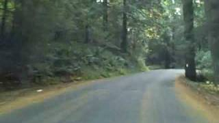 Fast Forward Humpback Road, Victoria, BC, Vancouver Island