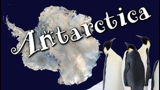 Antarctica For Kids: Cool Facts About Antarctica For Children - Freeschool