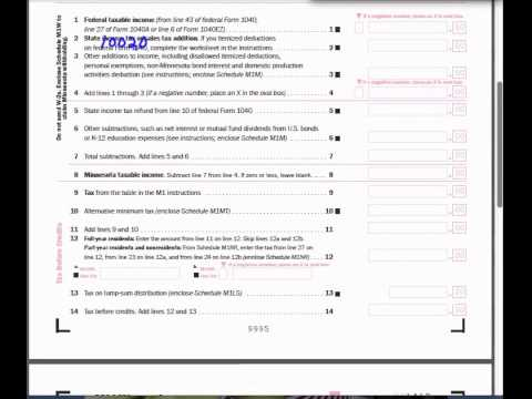 Sarah Walker M1 Tax Form Video