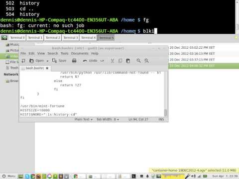how to set your bash history size in Linux Mint 13