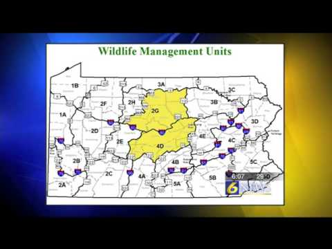 Less deer in Centre County due to management%2