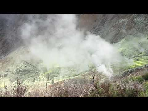 Hakone volcano