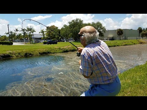 Gramps Catches HUGE Grass Carp | Monster Mike Fishing