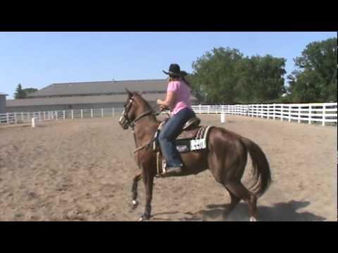 Teri & Look Ta Fly - Waseca, MN, 05Jun11, Barrels