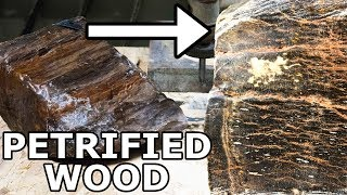 Download Petrified Wood Cut in Half with a 60,000 PSI Waterjet Video