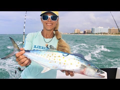 Deep Sea Fishing for SPANISH MACKEREL & More!