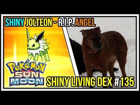 R.I.P. ANGEL   Shiny Jolteon - Shiny Eevee SOS Reaction   Shiny Living Dex #135 Pokemon Sun & Moon