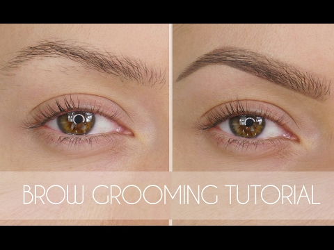 Eyebrow Grooming Tutorial In 6 Steps | Shonagh Scott | ShowMe MakeUp