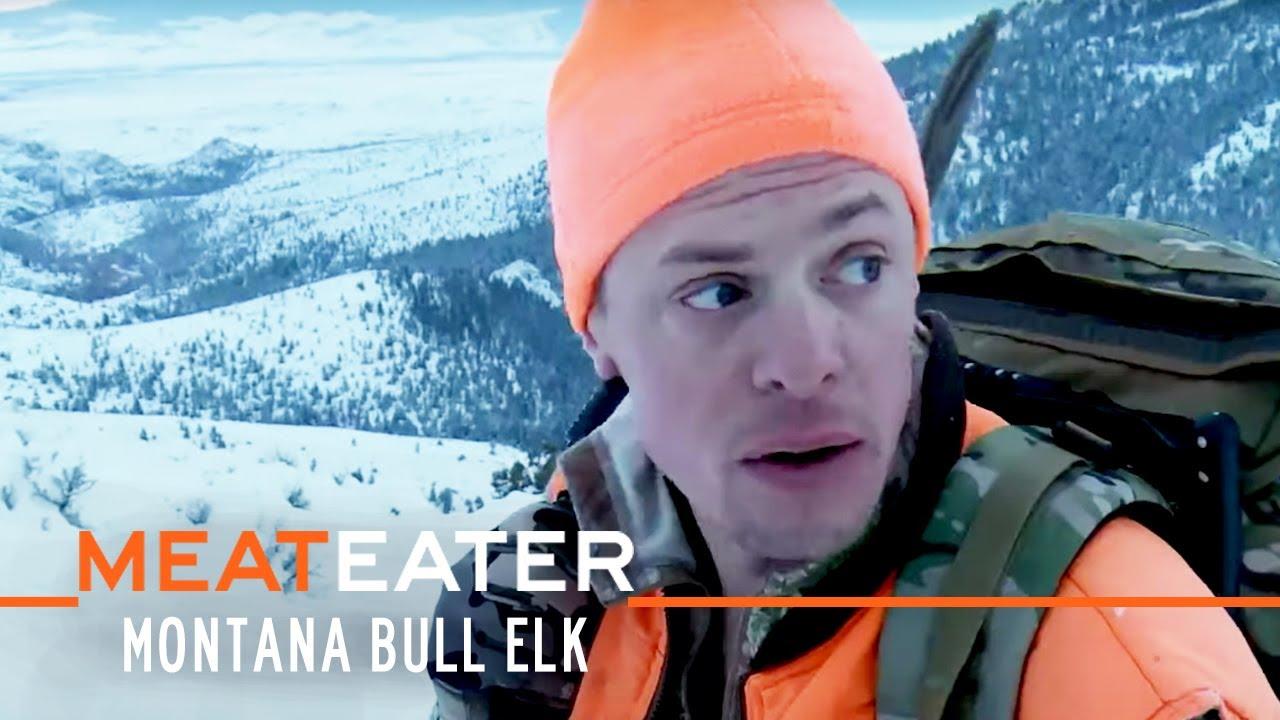 Local Motion: Montana Bull Elk | S4E04 | MeatEater