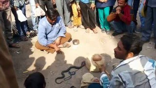 indian magic show and comedy from road side