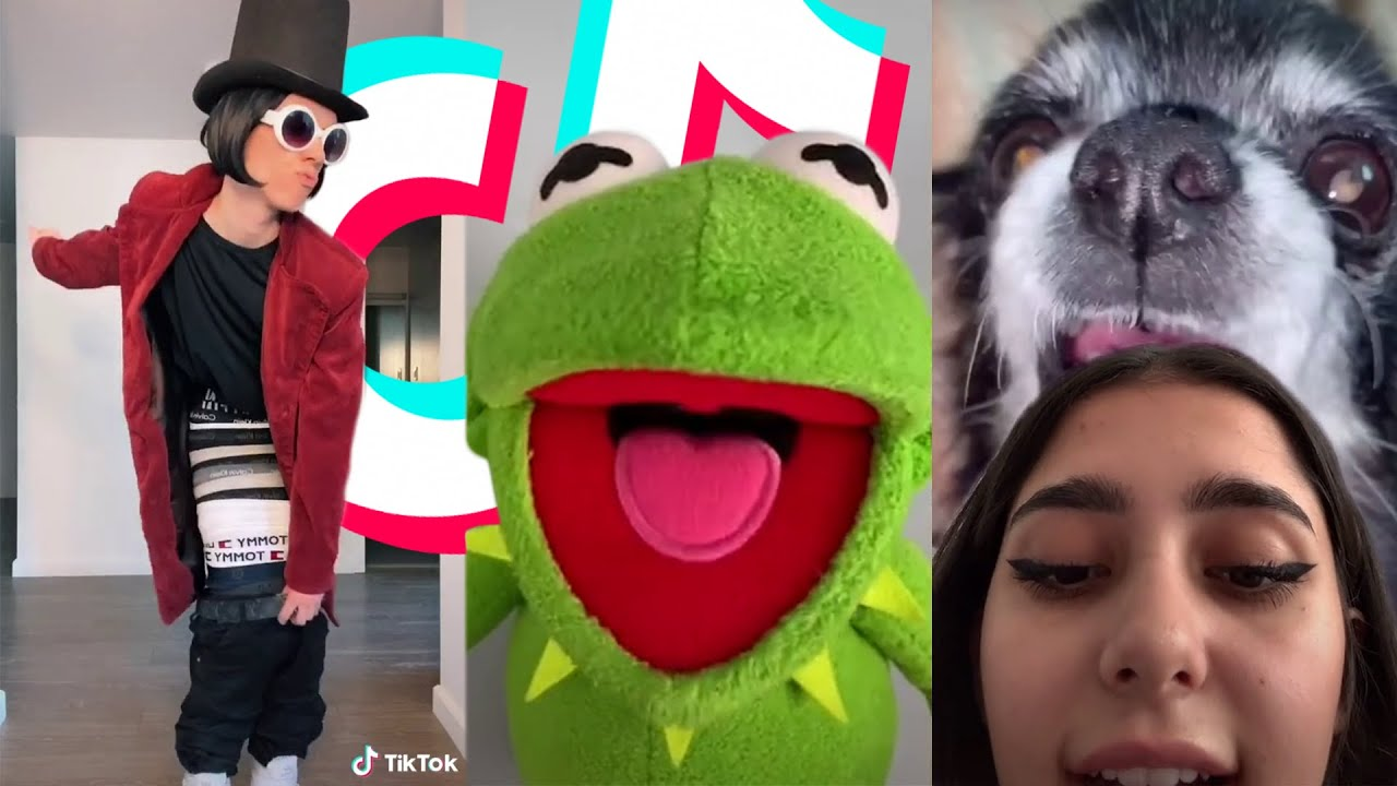 TIK TOK MEMES that made this the most liked video of 2021 🥰😉 | Daily TikToks