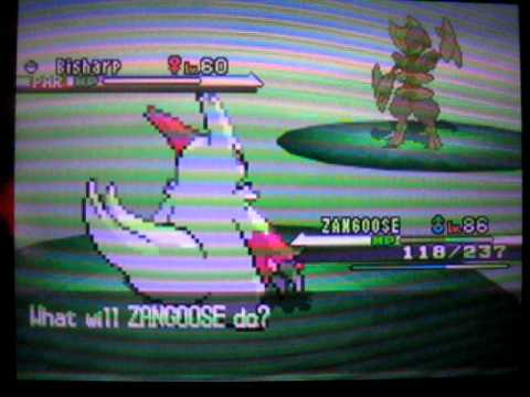 Wild shiny Bisharp encounter on Pokemon White
