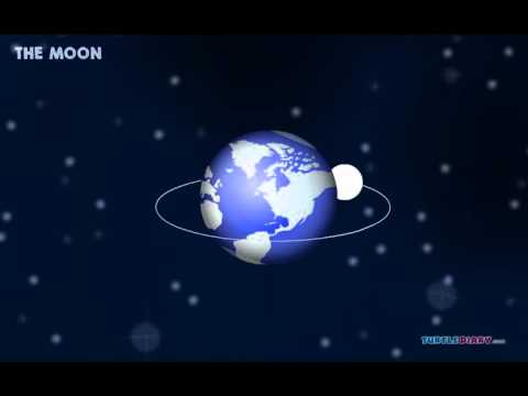 Phases of the Moon   Science Video for Kids