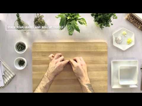 How to Handle Herbs | Assembly Line