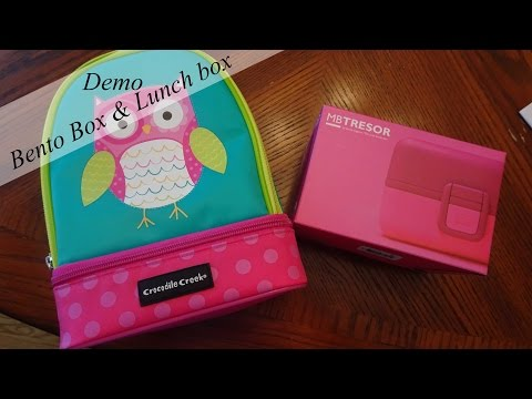 what we are using bento lunch box and lunch bag