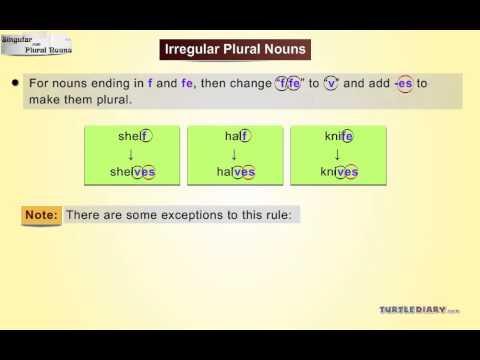 Grammar Video for Kids: Singular and Plural Nouns