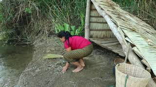 Primitive In forest - woman finding eggs crocodile for dog - Cook eggs in jars Catching crocodile
