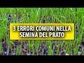 3 Errori Comuni che si Fanno nella Semina del Prato