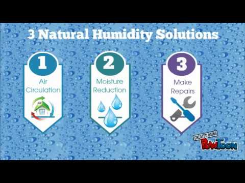 Ways To Naturlly Reduce Humidity In Your Home