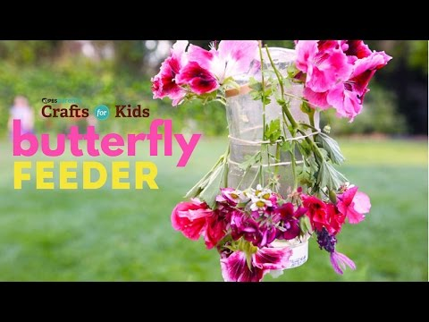 Butterfly Feeder  | PBS Parents | Crafts for Kids