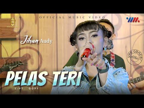Download Lagu Jihan Audy Pelas Teri Mp3