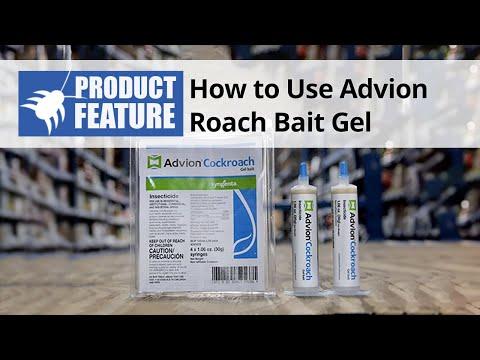 How to Use Advion Roach Bait Gel