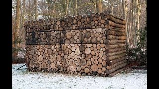 This Looks Like A Pile Of Firewood  But When You Look Closer… What The!