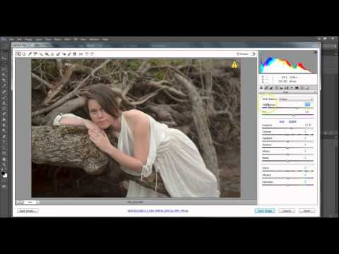 Adjusting White Balance in Adobe Camera Raw