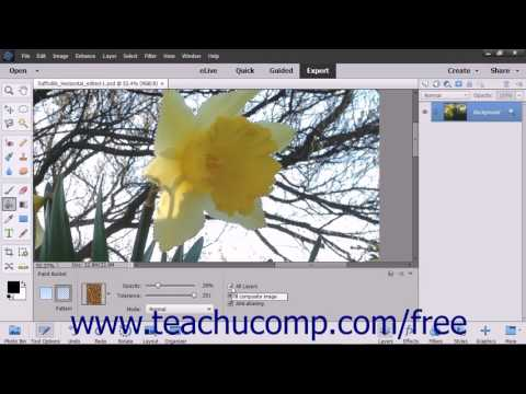 Photoshop Elements 15 Tutorial Using the Paint Bucket Tool Adobe Training