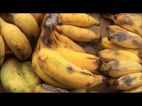 Cuộc sống ở Mỹ: Đi chợ trời của người Lào (Saturday flea market with a visit to Laos market)