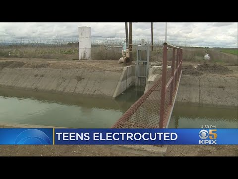 Xxx Mp4 Two Teen Boys Fatally Electrocuted By Fence While Trying To Rescue Dog 3gp Sex